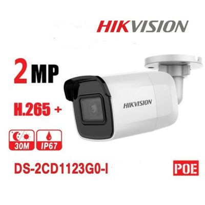 Camera IP Hikvision DS-2CD2021G1-I